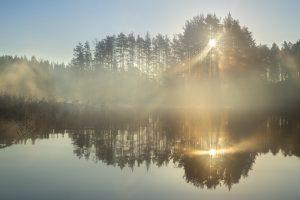 Morning time on Lake Saimaa 3