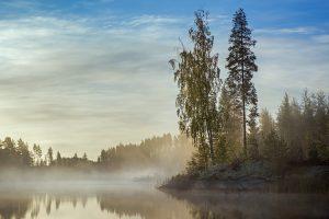 Usva-aamu Pihlajavedellä